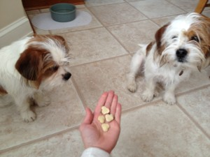 Fromm liver treats