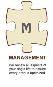 Puzzle-Management