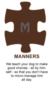 Puzzle-Manners