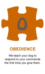 Puzzle-Obedience